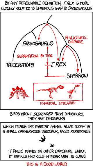 Cartoon illustrating the relationship between sparrows, T. rex, and the stegasaurus