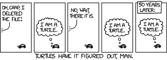 xkcd on turtles