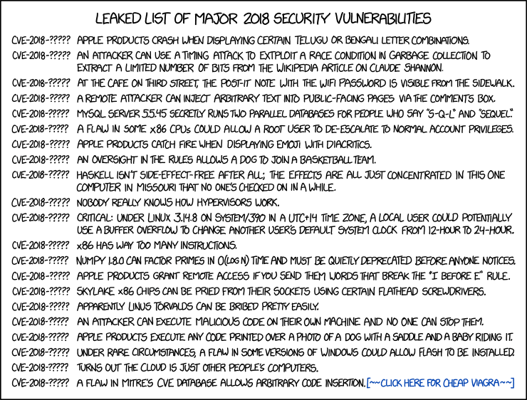 [xkcd on the 2018 CVE List]