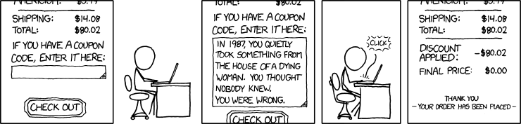 The Paddle web interface lets you create coupon codes. I hope you feel inspired by this classic comic. (Source: xkcd.com)