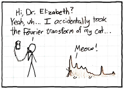 That cat has some serious periodic components