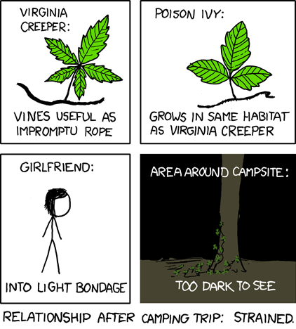 Know Your Vines