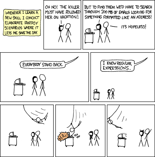 XKCD 208: a programmer swings in on a rope to save the day with regular expressions