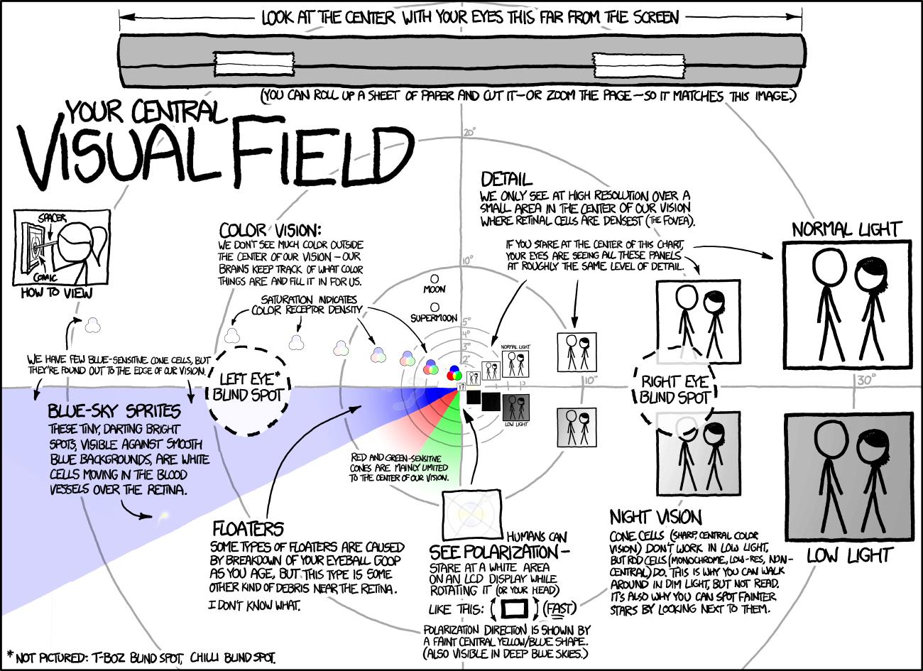 IMAGE(http://imgs.xkcd.com/comics/visual_field_large.png)